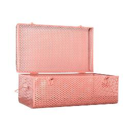 Large Metal Case - Coral